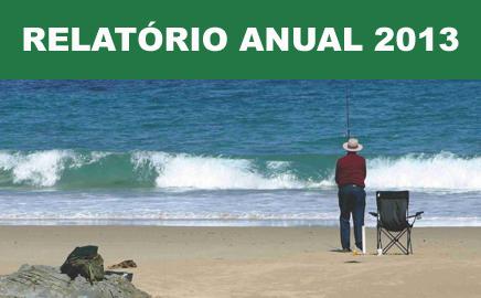 Relatório Anual 2013