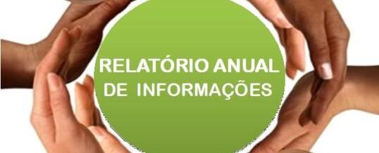 Relatório Anual de Informações – RAI 2017